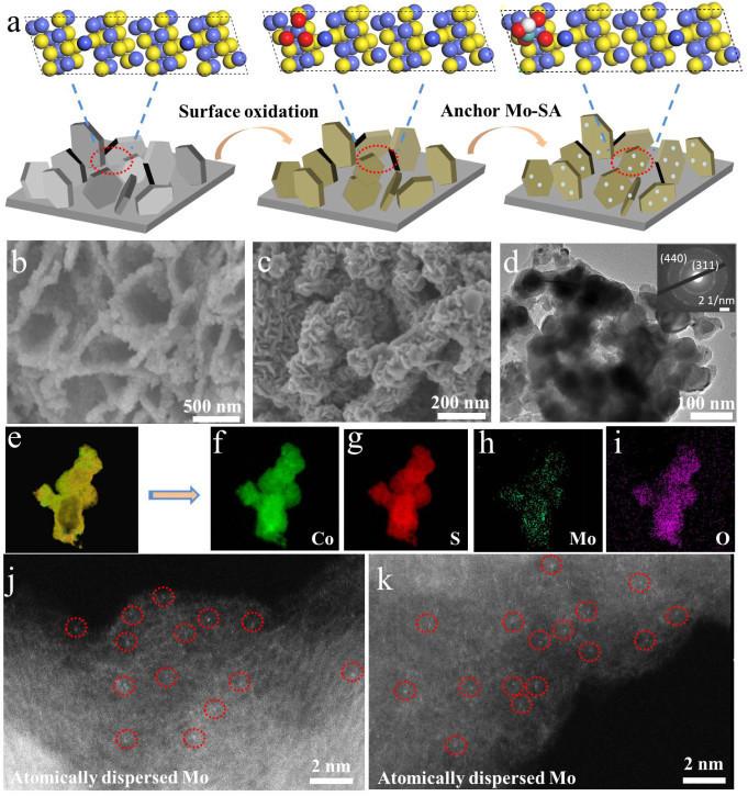 孙俊良/孙晓明:原子级分散的非贵金属双功能催化剂实现pH-Universal的水分解