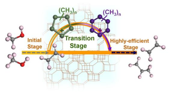 刘中民院士/魏迎旭/徐舒涛:环戊二烯物种再现新作用-连接MTO反应初期阶段和高效阶段的桥梁