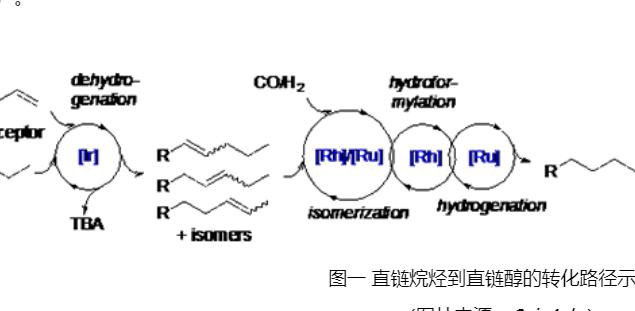 【催化】中科院上海有机所黄正课题组在烷烃的官能团化研究方面取得进展