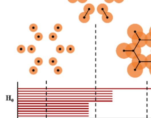 结构化学: 拓扑持续同调方法定量分析碳硼烷化合物的结构与稳定性