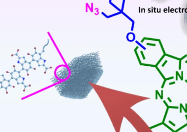 福建物构所|朱起龙研究员EES:双功能单分子异质结电催化剂用于完全选择性CO2转化集成有机氧化纳米聚合