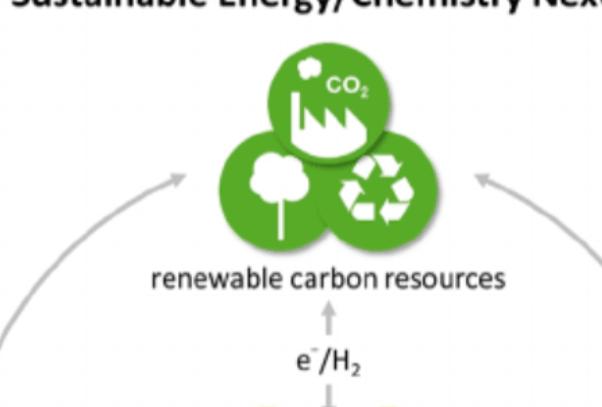 Angew综述:溶液相金属有机电化学CO2还原