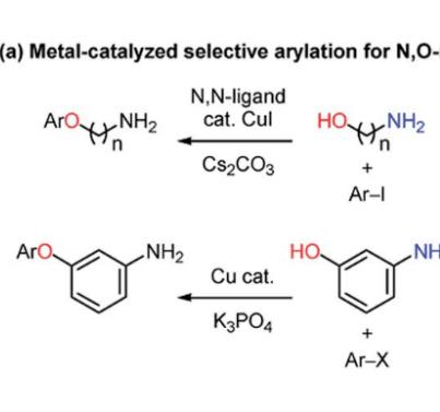 Chem. Sci.:碱依赖的吡啶-2-酮的N-或O-芳基化反应
