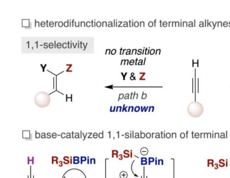Ruben Martin课题组Angew:碱催化末端炔烃的立体选择性1,1-硅硼化