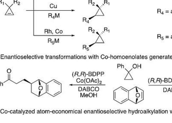 上海有机所孟繁柯课题组Angew:钴催化的环丙烯的不对称氢烷基化反应