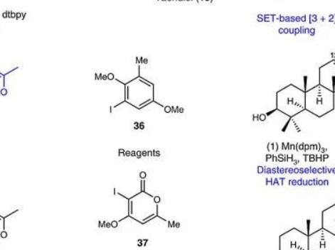 生物催化与自由基齐飞,杂萜合成共逆合成分析一色