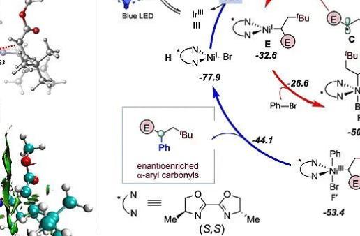 东华大学储玲玲研究员J. Am. Chem. Soc.:在烯烃不对称转化领域取得突破