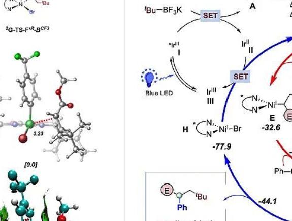 中心特聘研究员储玲玲课题组在烯烃不对称转化领域取得突破