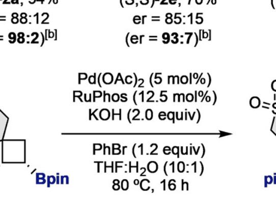 螺环丁烯的立体选择性二硼化:合成具有载体通道的螺环化合物