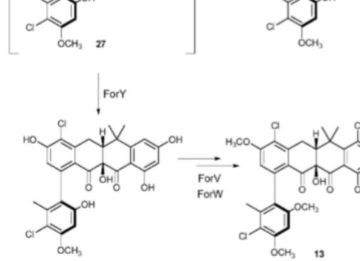 英国约翰英纳斯中心Chem. Sci.| fasamycins通过独特的扩缩环酶催化形成formicamycins