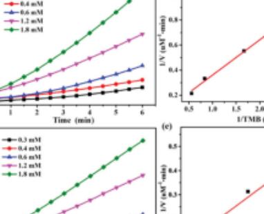 【Dalton Transactions】过氧化物酶模拟活性的Fe-MOF用于比色生物传感