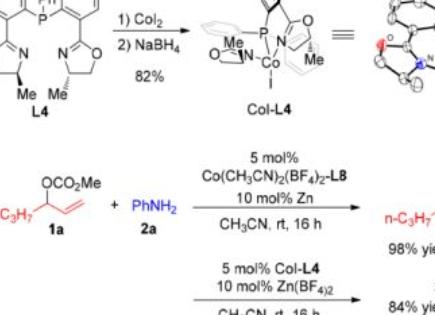 上海交大李长坤课题组JACS:钴催化的区域和对映选择性烯丙位胺化
