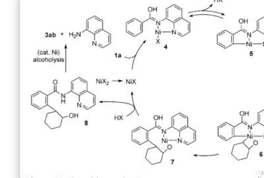 Angew. 镍催化苯甲酰胺与环氧化物的C-H偶联反应