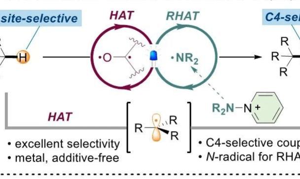 JACS:光催化下非活化烷烃的直接C-H吡啶化反应