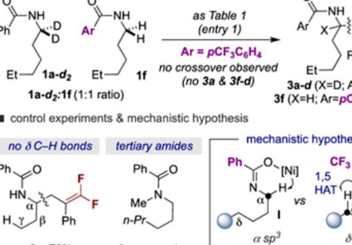 酰胺的定点(α、δ位)脱氟sp3C−H烷基化