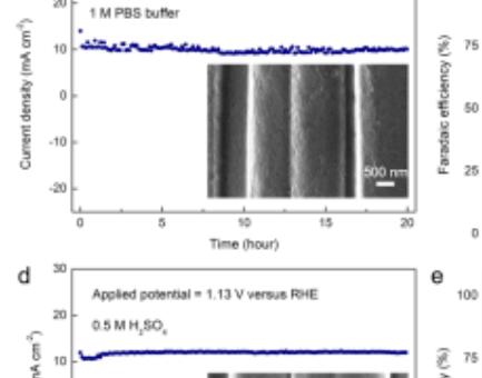 湖南大学王双印团队Angew:碳布电催化NO氧化实现硝酸盐合成