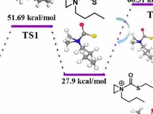 ACS Macro Lett.   两性离子交替聚合制备半晶质可回收的环聚氨硫酯