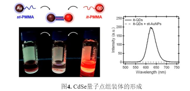 J. Am. Chem. Soc.∣用聚合物立体复合物构建纳米粒子组装体