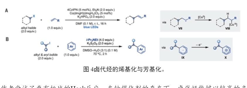 Science 烷基胺自由基活化卤代烃