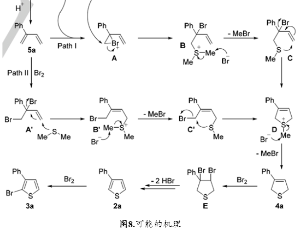 Angew. Chem. Int. Ed. | 以DMSO和烯丙醇为原料的噻吩环构建