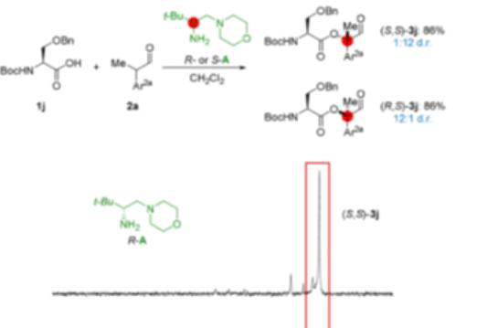 Angew.ChemII氨基酸/寡肽和醛的立体选择性生物共价反应