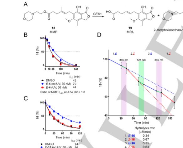 Angew. Chem. Int. Ed.||用于光控药物代谢的可光转换羧酸酯酶抑制剂的化学蛋白质组学新发现