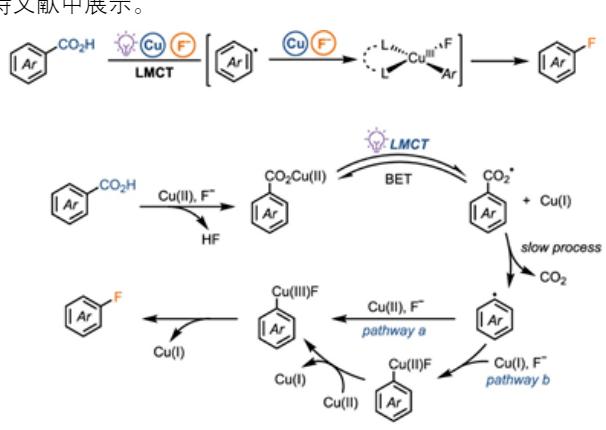 JACS||苯甲酸的自由基脱羧碳金属化法:芳香族脱羧氟化反应